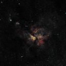 Eta Carinae nebula (NGC 3372) and surrounds,                                Nev. Blyth