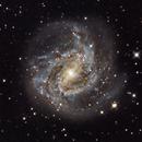 M83 Southern Pinwheel Galaxy,                                David Wright