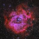 Rosette Nebula,                                Astrowood