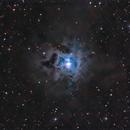 Iris Nebula NGC 7023,                                Kai Albrecht