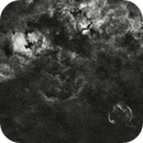 North America Nebula and the Cygnus Loop in Ha,                                Andrew_B