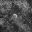 Crescent Nebula,                                Casey Good