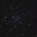 M34 / NGC 1039 - Open Cluster in Perseus,                                Falk Schiel
