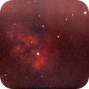 NGC 7822 in Cepheus const. / Canon 600D + SW 80 ED PRO / SW EQM-35 / 1600 iso,                                patrick cartou