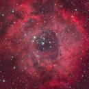 NGC 2244 HaRGB,                                Mario Richter