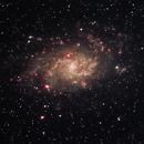 M33,                                Rick Gaps