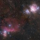 Orion Nebula and Horsehead Region (2019 image),                                Logan N