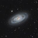 M 64 (Black Eye galaxy),                                DetlefHartmann