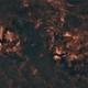 Cygnus with ASI178-MM and Samyang 24 mm,                                Ben