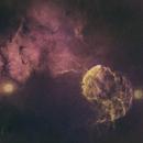 Starless Jellyfish,                                ks_observer