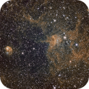 IC417 The Spider nebula and NGC 1931 The Fly,                                Fernando Huet