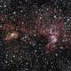 NGC3576 - Statue of Liberty,                                CarlosAraya