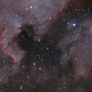 North America Nebula and Pelican,                                Martin Palenik