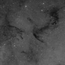 Dark Nebula Barnard 365 in Constellation Cepheus,                                Falk Schiel