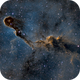 The Elephant Trunk Nebula in the Hubble Palette,                                Alex Roberts