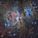 M42 RASA 8,                                Starguy999
