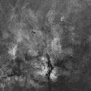 Sadr region and Crescent nebula Ha-Mosaic,                                Boštjan Zagradišnik