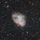Crab Nebula First Light,                                Marlon