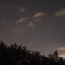 La comète Néowise au 15 juillet 2020 (2),                                Corine Yahia (RIGEL33)