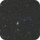 M81 and M82 widefield at 135 mm,                                Ray Heinle
