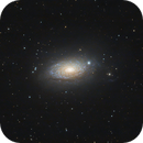 M63 Sunflower galaxy,                                David R