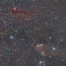 LDN 1251 and LDN1235 Fish Nebulae,                                Carastro