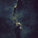 IC 1396 Elephant's Trunk in Narrowband,                                Barczynski