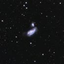 Cocoon Galaxy,                                Samuel