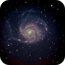 Galaxie M101,                                Michael Rogge