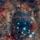 Rosette Nebula, Caldwell 49,                                meteoritehunterjim
