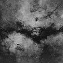 IC1318  Nébuleuse du Papillon,                                Laurent