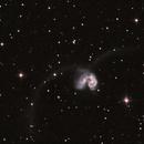 NGC 4038/39 - ARP 244,                                Günther Eder