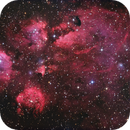 NGC 6334 - The Cats Paw Nebula,                                Terry Robison