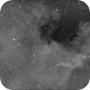 NGC7000 North America Nebula,                                Ray Heinle