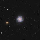 NGC 3184 Little Pinwheel Galaxy HALRGB,                                Fritz