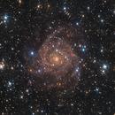 IC 342,                                James Schrader