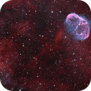 NGC 6888 Crescent Nebula and a faint Soap Bubble,                                Phil Brewer
