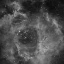 Caldwell 49, Rosette Nebula in HA,                                Erik Guneriussen