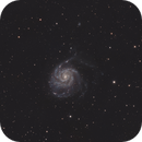 M101 - Pinwheel Galaxy,                                David Toole