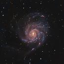 M101 - The Pinwheel Galaxy,                                Jason Wiscovitch