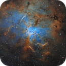 NGC1491 in Hubble Space Telescope palette,                                Sara Wager