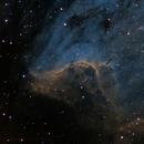 Pelican Nebula,                                Samuel