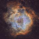 The Rosette Nebula in SHO,                                Arun H.