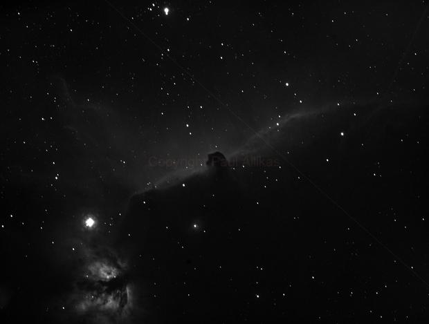 Flame and Horsehead Nebulae,                                Paul Allikas