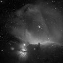 Horsehead nebula in Ha,                                Nikolay Kondrashov