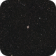 Starry starry night,                                Veljko Petrović