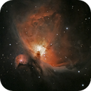 Orion Nebula,                                Richard Blackshaw