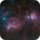 Orion Area Wide,                                Miles Zhou