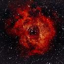 Rosette Nebula,                                Trevor Boomstra