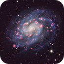 NGC 300, Spiral Galaxy in Sculptor,                                flyingairedale